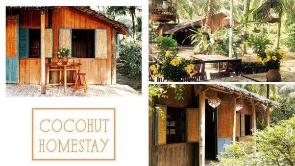 Top 10 Homestay Ở Bến Tre Đang Nổi Rần Rần Ở Xứ Dừa Bến Tre